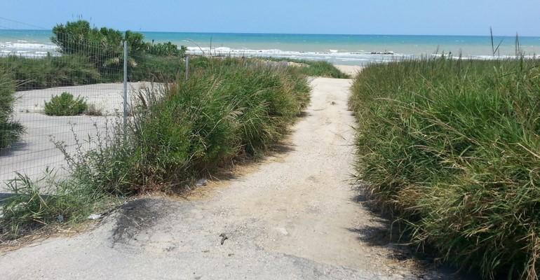 Termoli, spiaggia delle dune: aumentano gli stormi di uccelli migratori