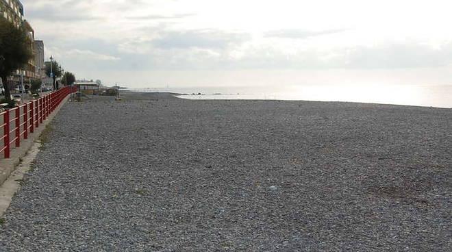 """Vallecrosia, aperto il bando per la prima spiaggia libera """"Dog Friendly"""""""