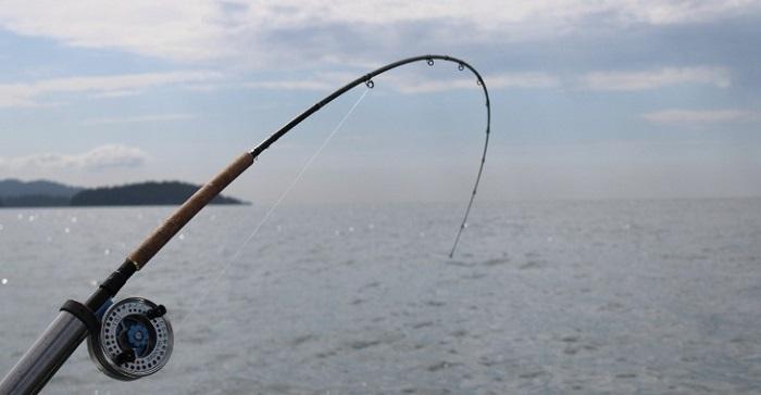 decreto legge governo per pesca e nautica